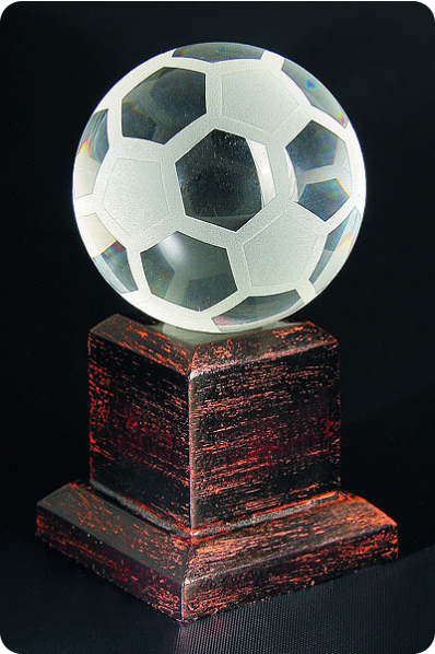 The Soccer Ball Trophy