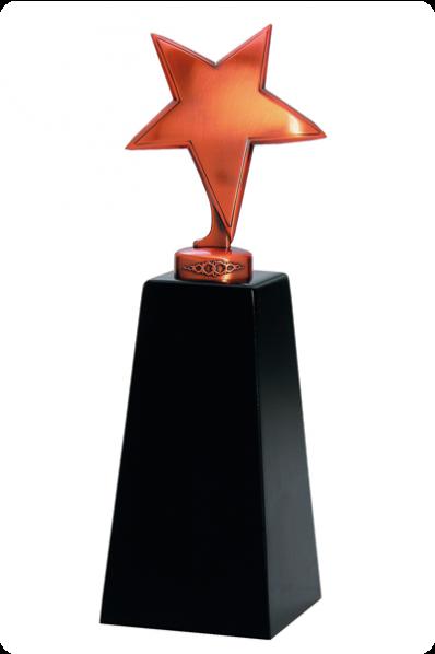 The Star Resin Award