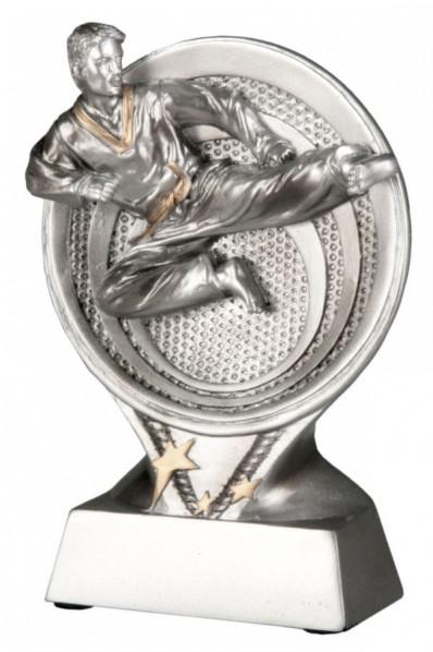 Karate Award IV